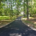 Wooded Driveway - After 2